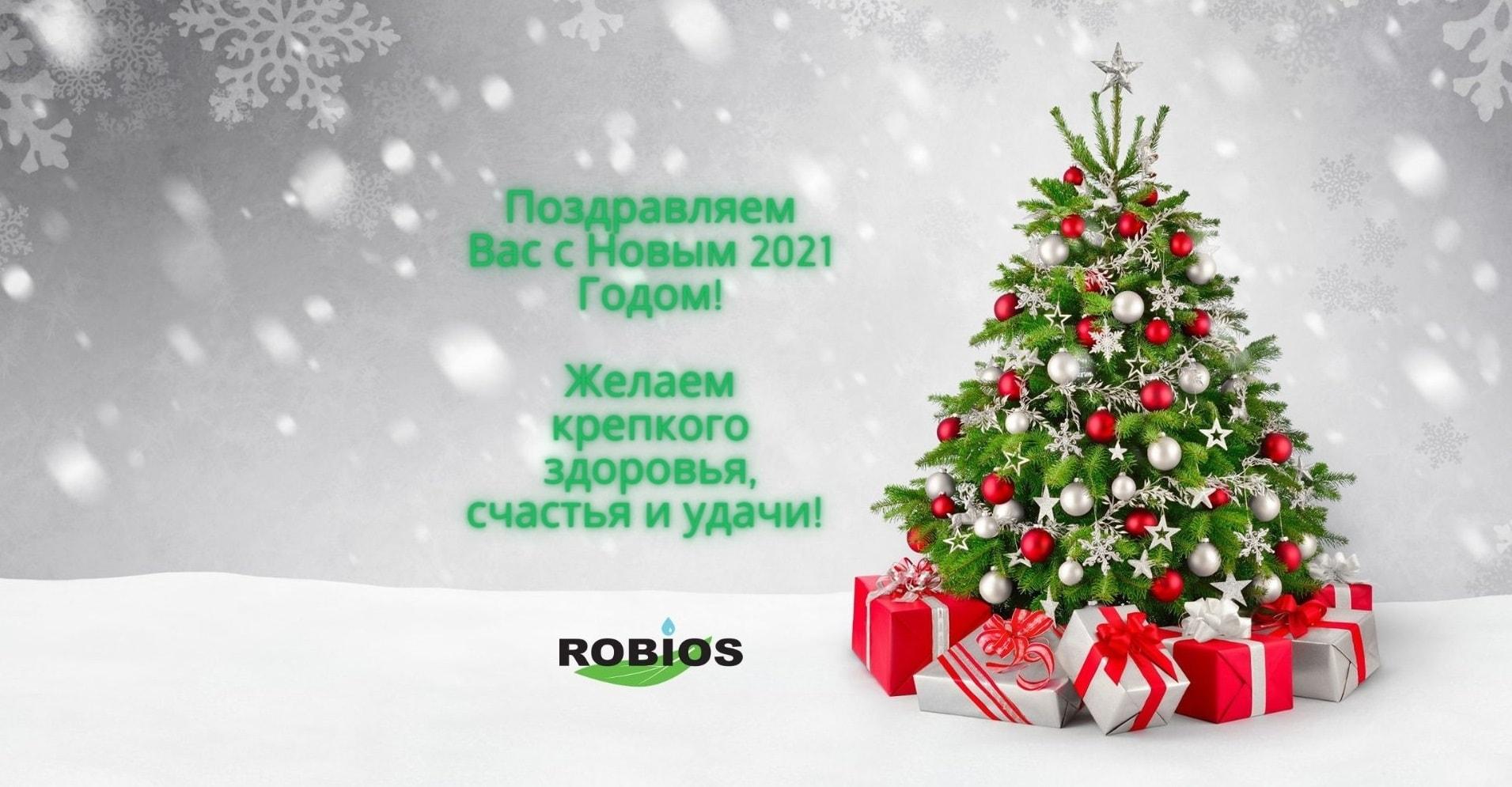 Robios LLC Happy New Year!